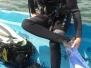 Podstawowy kurs na płetwonurka P1 w miejscowości Trygort na jeziorze Mamry: 27czerwca - 2lipca 2016